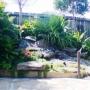 japanese_garden_013