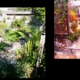 japanese_garden_022