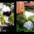 japanese_garden_006